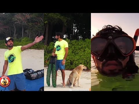 Sheikh Hamdan With Rajan The Swimming Elephant in Andaman Island