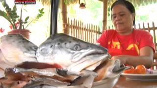 Kapuso Mo, Jessica Soho: Maginhawa street, a foodie's paradise
