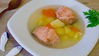 Как варить уху? Рыбу в холодную воду сразу бросать или в кипящую?