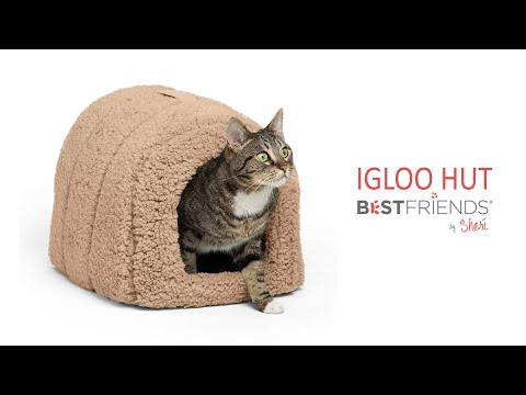 igloo-hut-from-best-friends-by-sheri