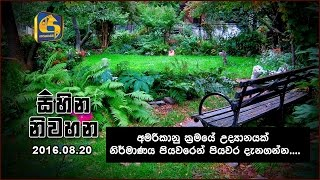 Sihina Niwahana - 20th August 2016 -  Interview with Upul Amarasinghe