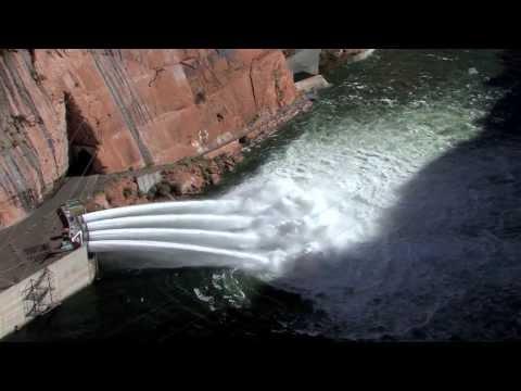 20132014 Arizona Wildlife Views   6