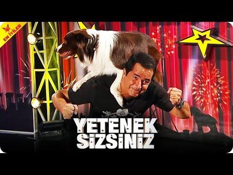 Şampiyon Köpek Max'tan Müthiş Gösteri   Yetenek Sizsiniz Türkiye