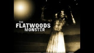 Unknown Mysterious Creature The Flatwoods Monster
