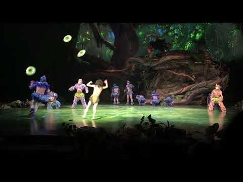 Tarzan: Call of the Jungle at Shanghai Disney Resort