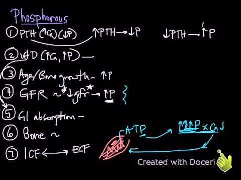 Phosphorous & Magnesium