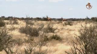 Namibia erleben / Teil 6 - Lodges zum Wohlfühlen