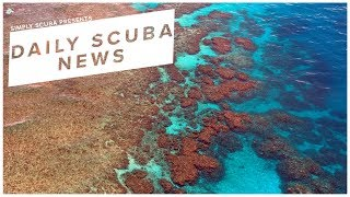 Daily Scuba News - Australia To Fund Protection Of The Great Barrier Reef