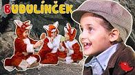Rozprávka o Budulínčekovi - Rozprávky Líšky a Vlka