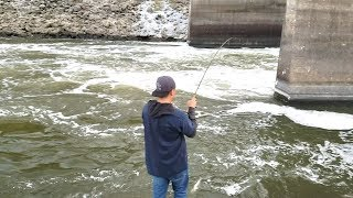 Wiper and Catfish Fishing in Spillway. EP 32