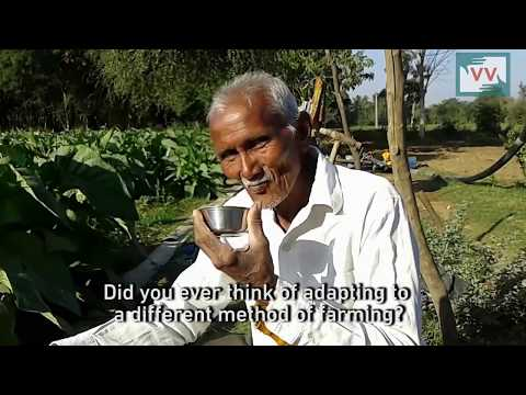VV Video: Solar Energy, a Cash Crop for Gujarat Farmers