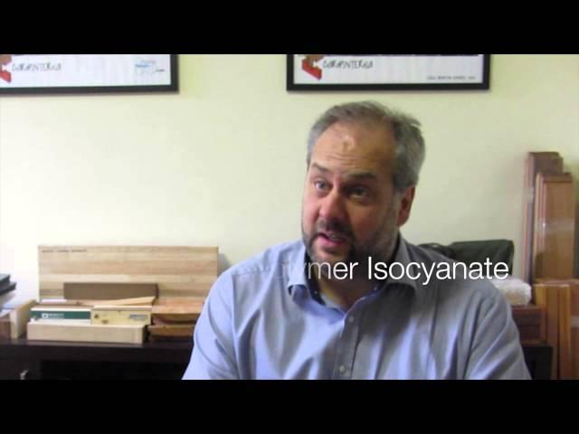 Carpinteria Entrevista 1 - Eng. Martin Kemmsies - Adesivos Estruturais para Madeira