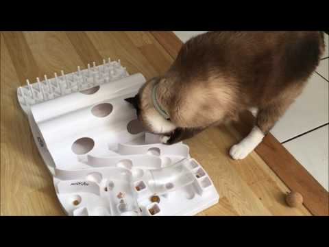Domino Foraging Board by Trixie Pet