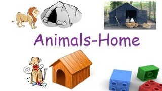animals and their homes for children flash cards