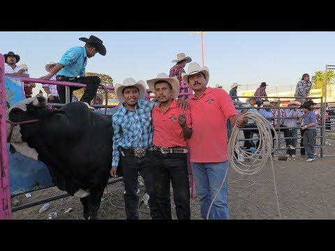 todos quieren la foto con este toro!! LOS TORS DIVINOS DEJAN HUELLA EN LA GIRA 2017