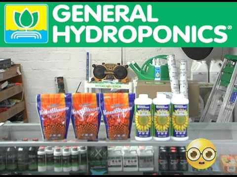Hydro Nerds - General Hydroponic's Kool Bloom