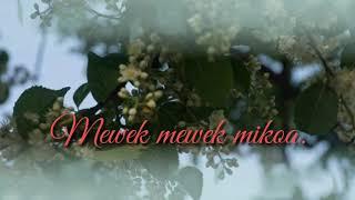 Mewek mewek garo song cover lyrics video hd tv.