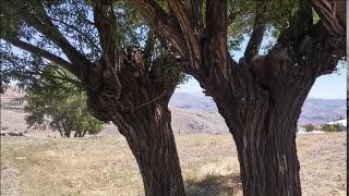 Malatya Atmalı Köyü (Belkıs Akkale - Biter Bir Gün)