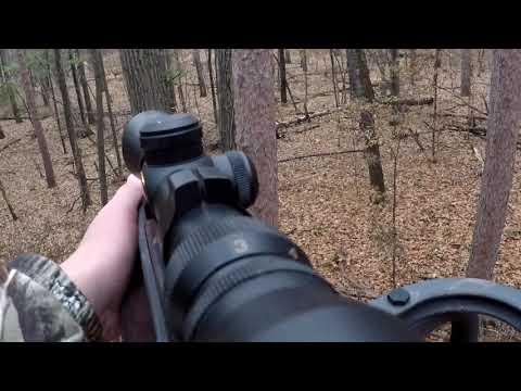2018 Deer Hunting. Nice 8 Point Buck Down! (GoPro)