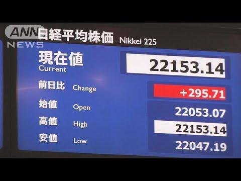 """5日ぶりに反発 """"トルコショック""""で市場不安定(18/08/14)"""