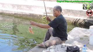 Fast Fishing In Pond Mancing Mania 2