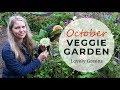 October in the Vegetable Garden