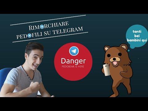 ASSURDO!! PEDOBEAR DAPPERTUTTO O.O !! - Strangerbot (Telegram)