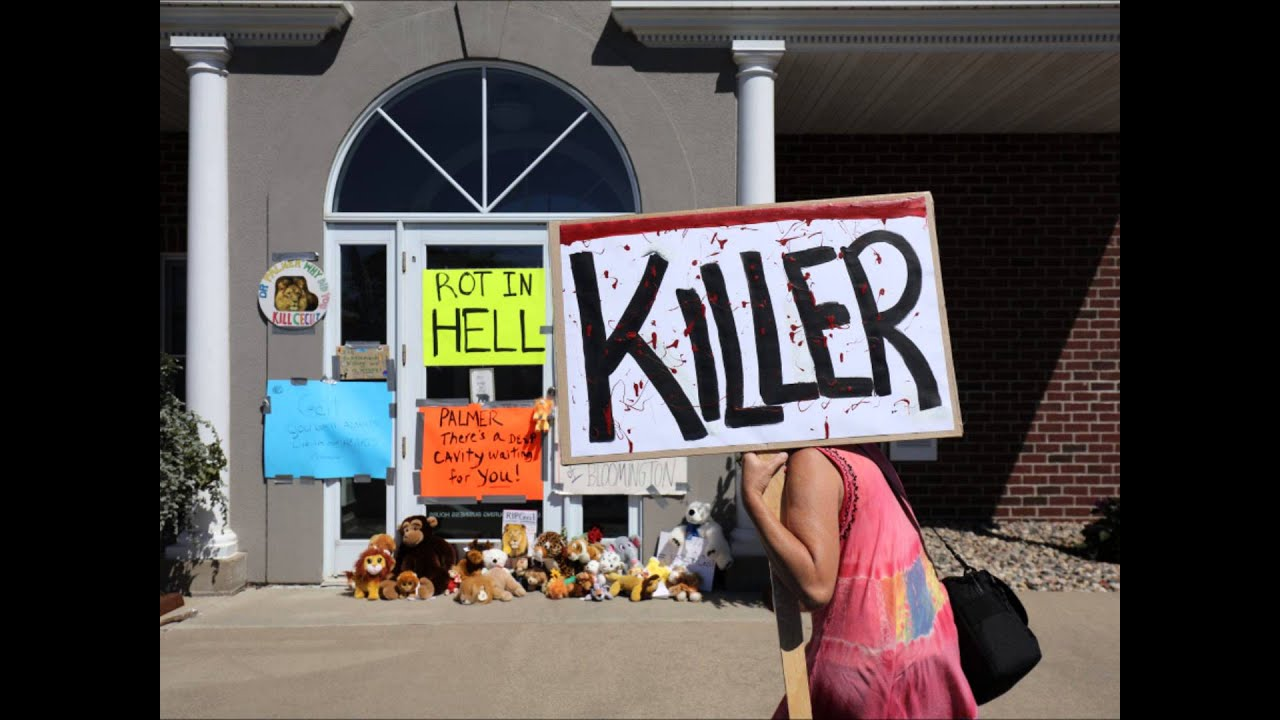 Download Why the Dentist is not at fault for killing Cecil the Lion