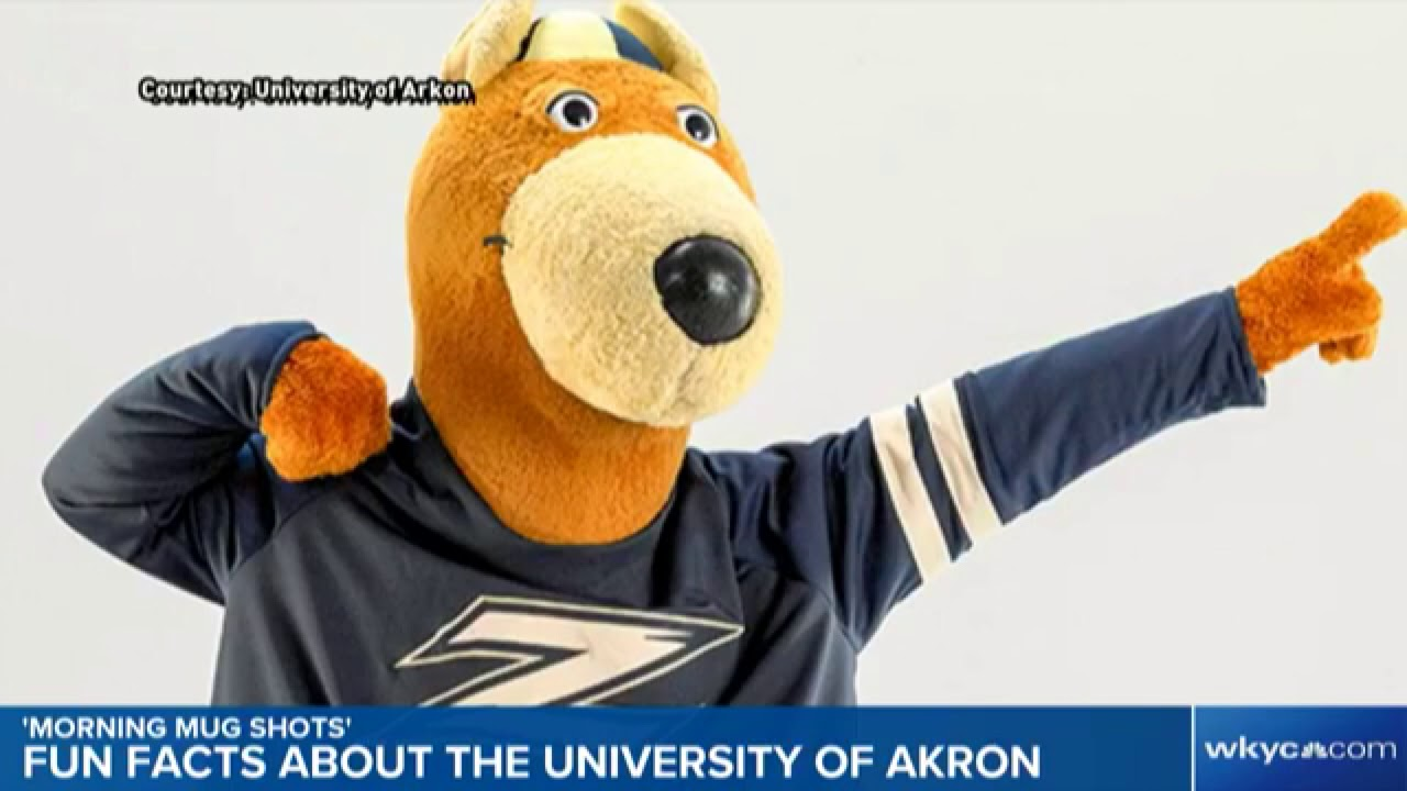 fun facts about the university of akron morning mugshots youtube