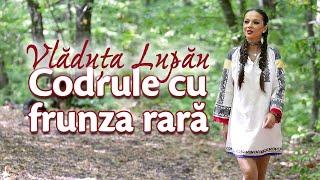 Vladuta Lupau - Codrule cu frunza rara