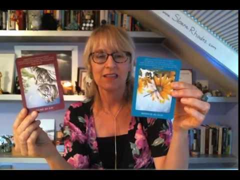 Cancer Life Purpose, Money & Career October, November, December 2017 Tarot Reading by Sloane Rhodes