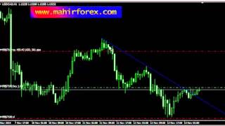tips Profit Trading Forex