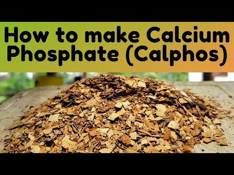 Download How to Make Calcium Phosphate (Calphos)