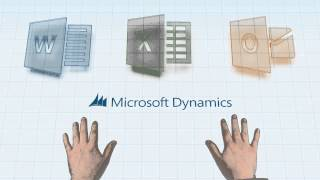 Business Management Software for Business: Microsoft Dynamics