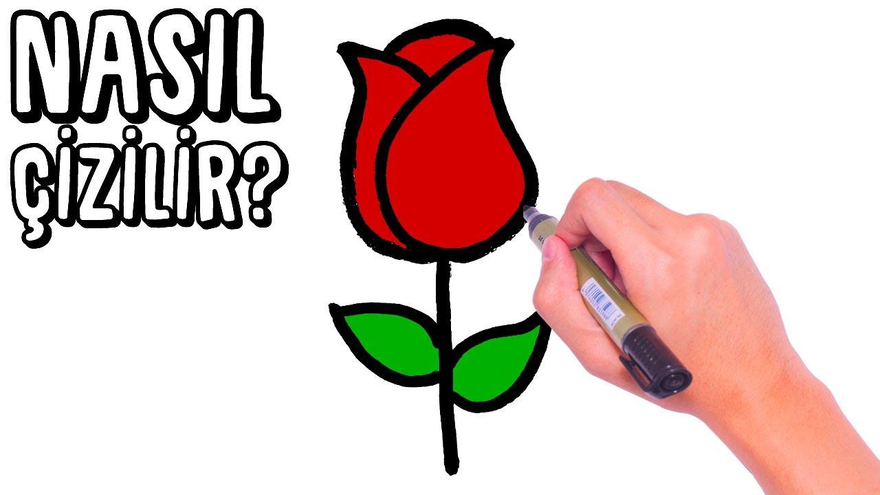 Nasıl Çizilir? - Tavus Kuşu - Çocuklar İçin Resim Çizme - RÜYA OKULU