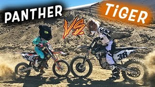 The Fastest Race EVER. Tiger VS Panther!?!