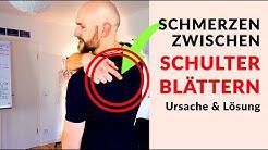 Schmerzen zwischen den Schulterblättern lösen - Ursache & Lösung in Mobility & Dehnung