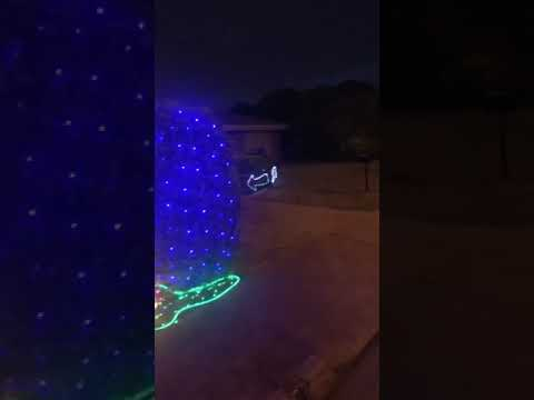 Mikey - Neighbor Brilliantly Competes With Next-Door Light Display!