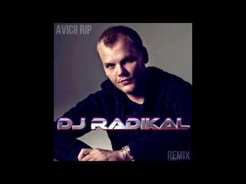 RIP - REMIX - DJ RADIKAL