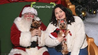 Vlogmas Day 18⎢Taking 5 Dogs To The Mall!!