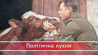 Звідки взялися корови у житті лідера Радикальної партії Олега Ляшка, Політична кухня