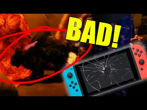 EVE BROKE OUR SWITCH! - Stream Highlight #72