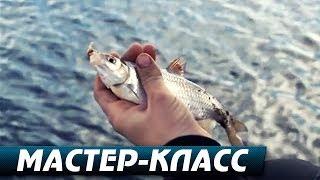 Ловля Плотвы в Начале Весны.