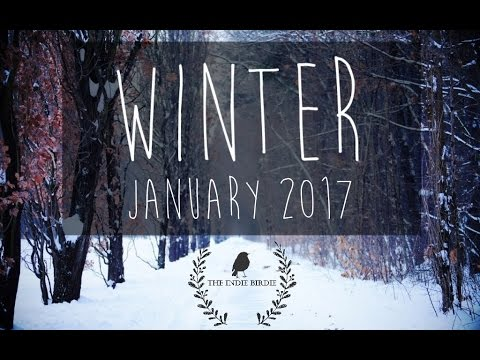 Winter Indie Folk Playlist (January 2017)