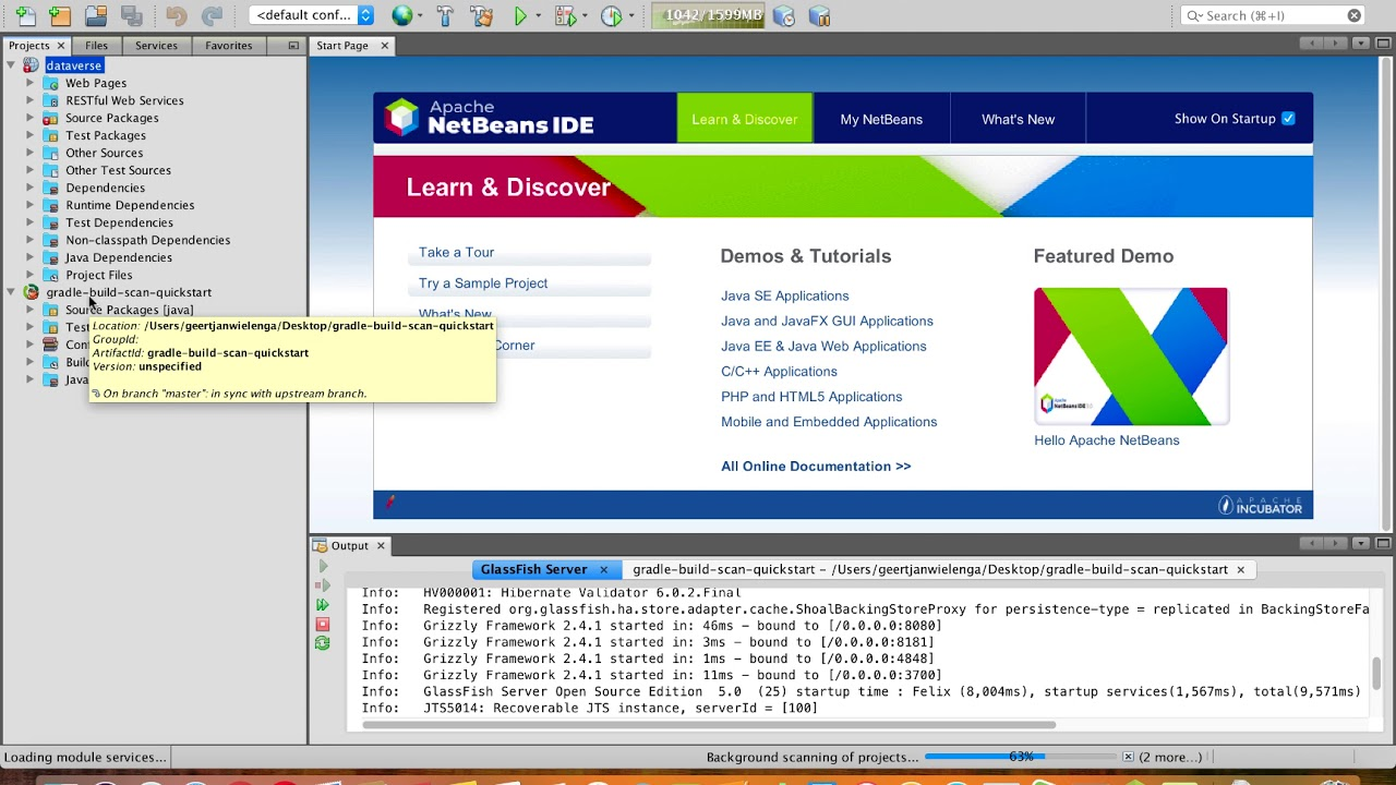 Downloading Apache NetBeans (incubating) 11 0