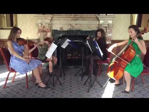 Northern String Quartet for Hire| Penny Lane Quartet