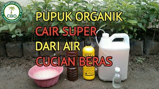 Download lagu Membuat Pupuk Organik Cair Dari Air Cucian Beras, Liquid Organic Fertilizer From Washing Rice Water