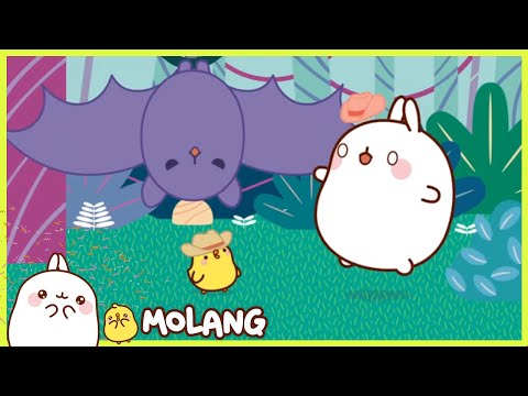 Molang - The jungle | Comedy Cartoon | More ⬇️ ⬇️ ⬇️