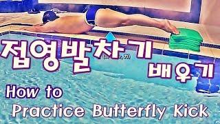 수영강습 / 접영킥 배우기 / How to practice Butterfly Kick