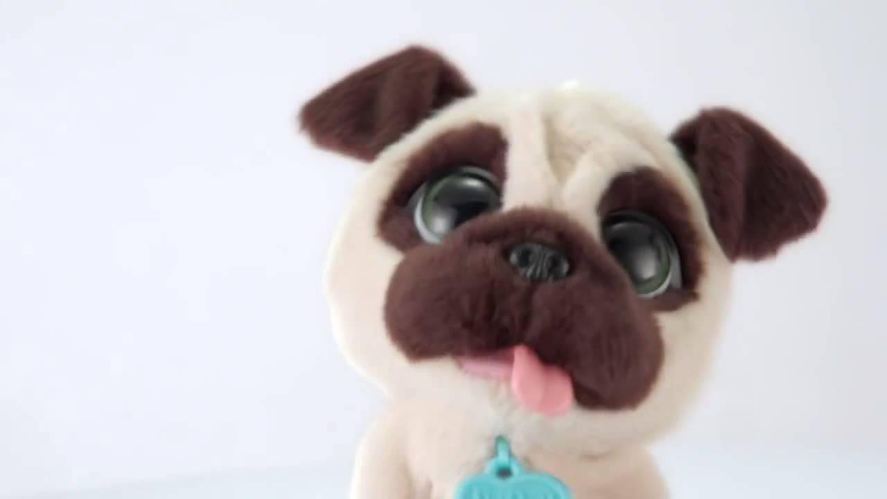 Собаки и щенки породы мопс харьков. На сервисе объявлений olx. Ua харьков легко и быстро можно купить щенка мопса. Заведи друга прямо сейчас!